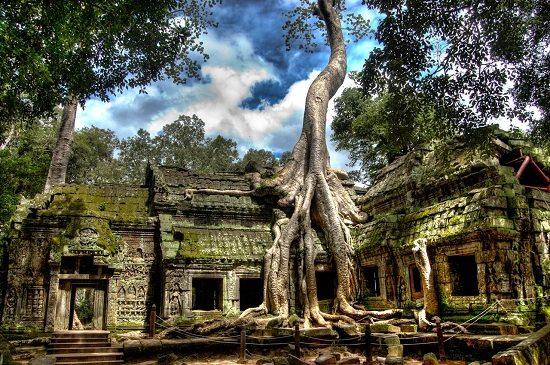 Đền Ta Prohm ở Siem Riep