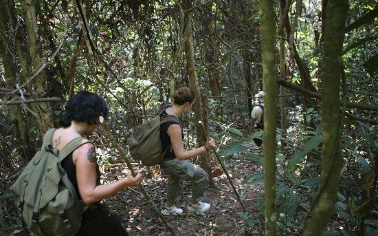 Trekking xuyên rừng trên đảo Koh Rong